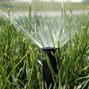 garden-irrigation-sprinklers-st-albans