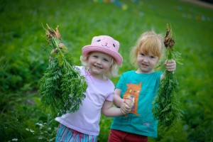 Annual Carrot Carnival at Willows Activity Farm
