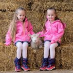 The February Frolics lambing season starts this February half term at Willows Activity Farm