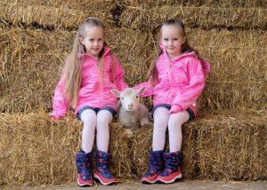 The February Frolics lambing season starts this February half term at Willows Activity Farm