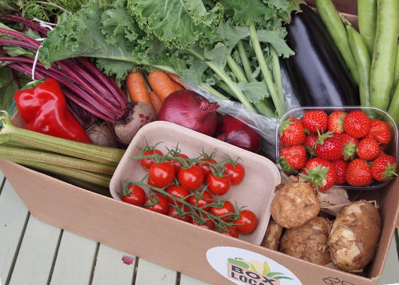 Box Local, local produce delivery service - What's on St Albans