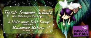 Trestle Summer Schools 2018