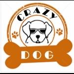 Crazy Dog [Rock Covers, 5 piece]