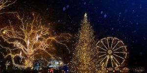 Meraki Christmas Festival: Adult Multi Activities Pass