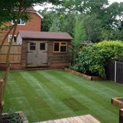 laying-lawn-turfing-st-albans