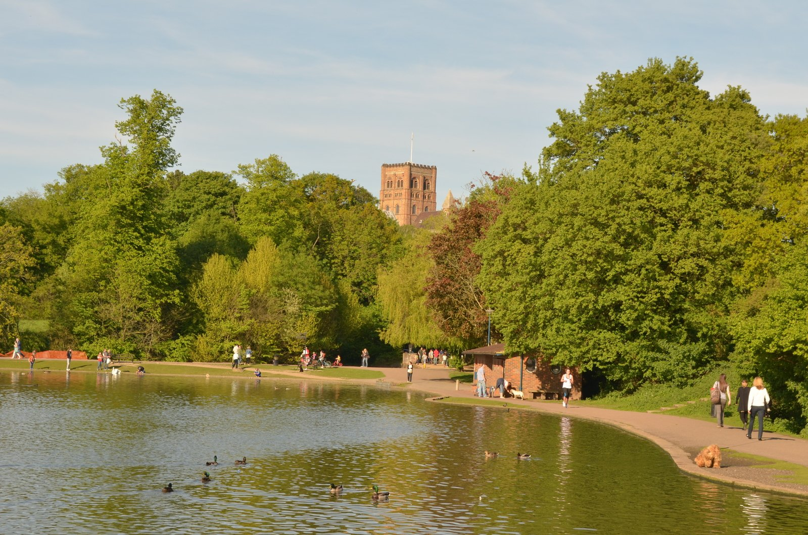 What's on St Albans