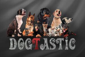 dogtastic logo