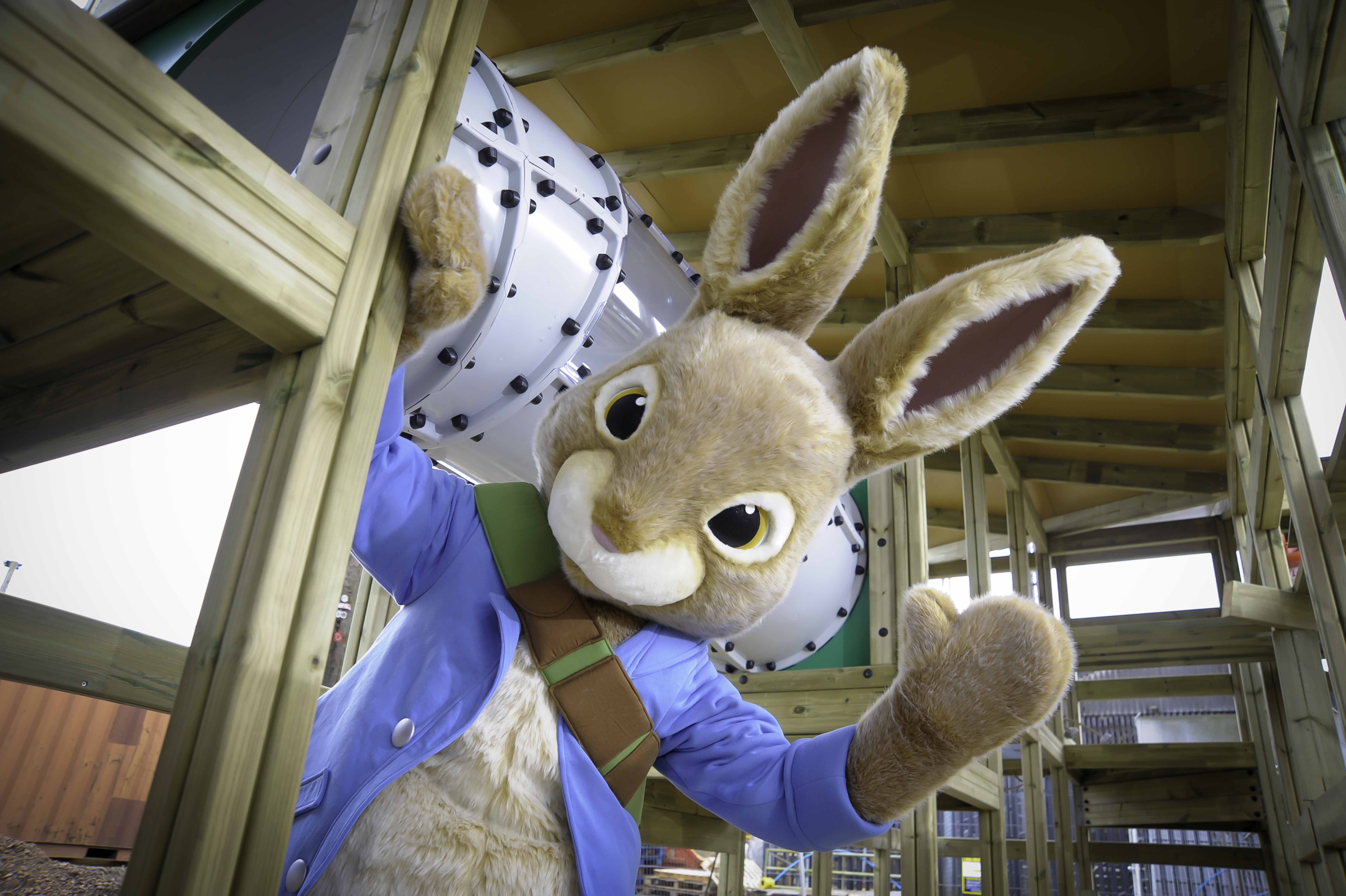 Peter Rabbit Holiday Hop
